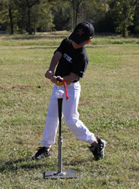Insider Bat Training Bat